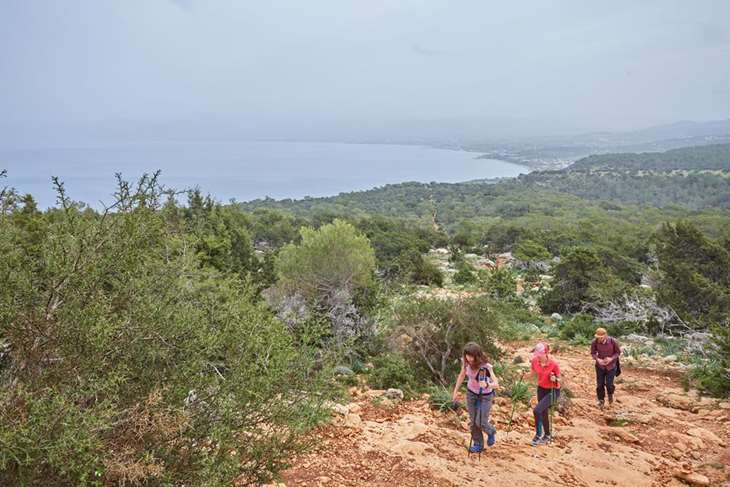 Туристическая экскурсия к купальне Афродиты